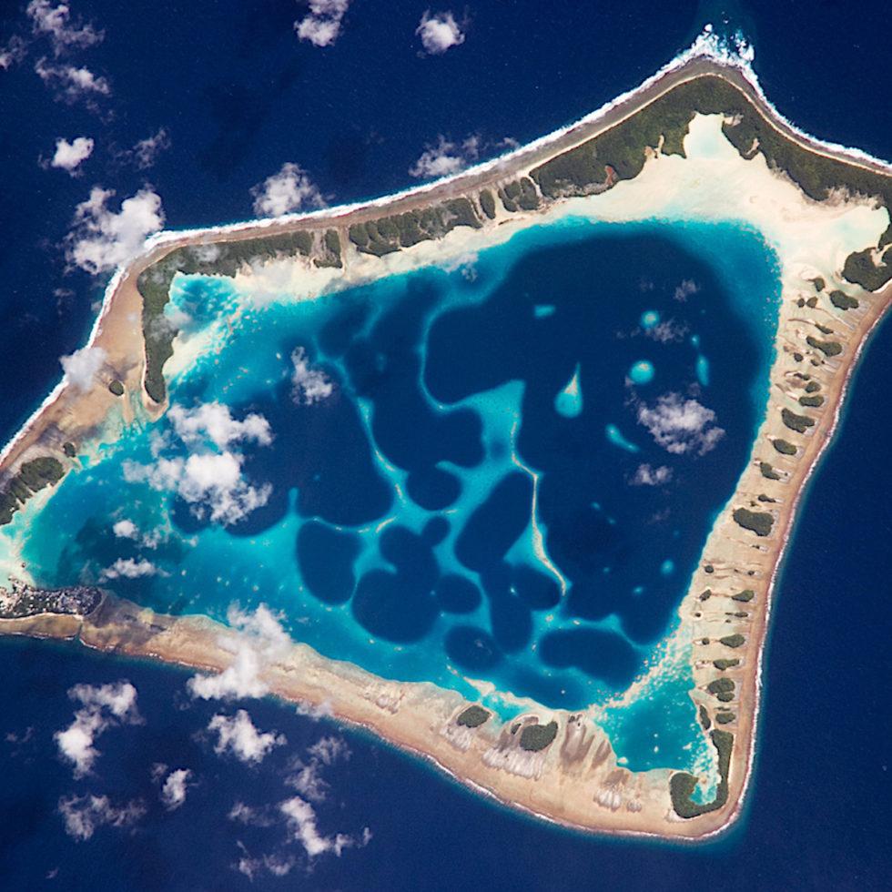 isole coralline